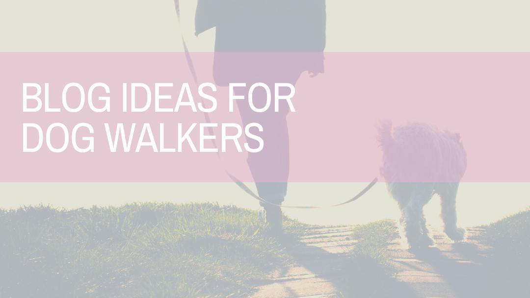 Blog Ideas for Dog Walkers | Amplihigher Copywriting