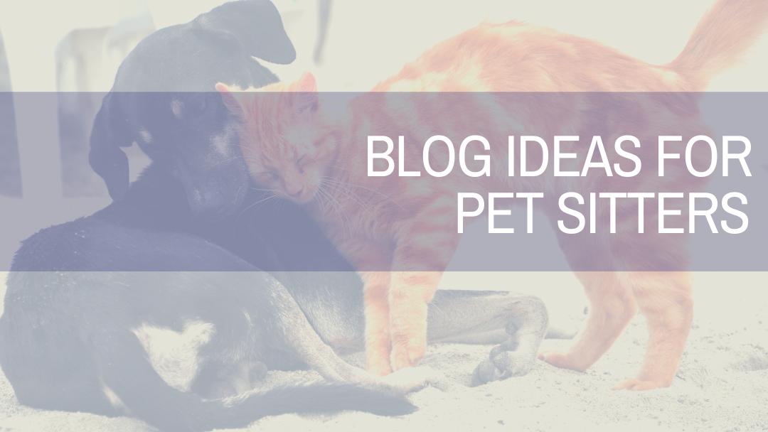 Blog Ideas For Pet Sitters | Amplihigher Copywriting